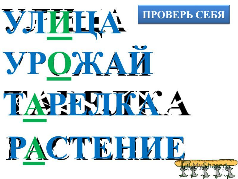 ПРОВЕРЬ СЕБЯ УЛИЦА УРОЖАЙ ТАРЕЛКА РАСТЕНИЕ 7