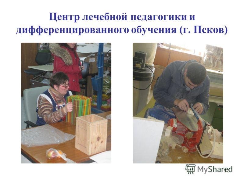 Центр лечебной педагогики и дифференцированного обучения (г. Псков) 17