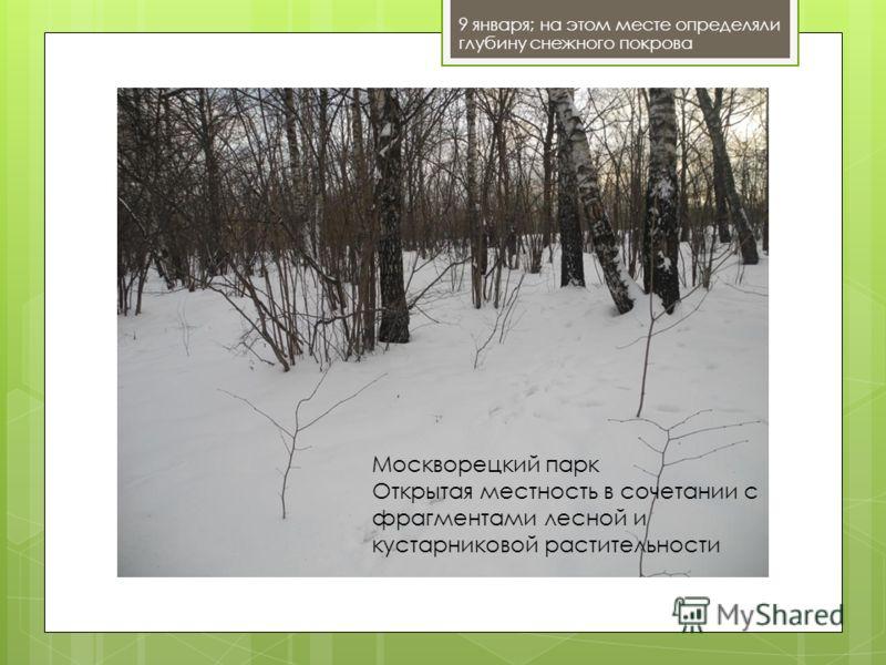 9 января; на этом месте определяли глубину снежного покрова Москворецкий парк Открытая местность в сочетании с фрагментами лесной и кустарниковой растительности