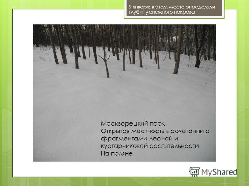 9 января; в этом месте определяли глубину снежного покрова Москворецкий парк Открытая местность в сочетании с фрагментами лесной и кустарниковой растительности На поляне