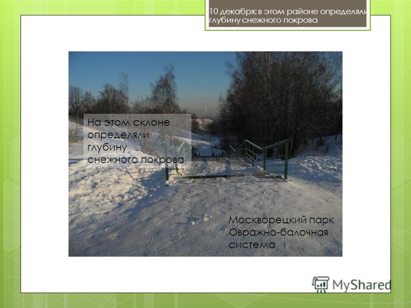 10 декабря; в этом районе определяли глубину снежного покрова Москворецкий парк Овражно-балочная система На этом склоне определяли глубину снежного покрова