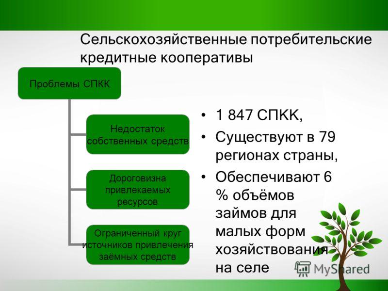 Сельскохозяйственные потребительские кредитные кооперативы 1 84 7 СПКК, Существуют в 79 регионах страны, Обеспечивают 6 % объёмов займов для малых форм хозяйствования на селе Проблемы СПКК Недостаток собственных средств Дороговизна привлекаемых ресур