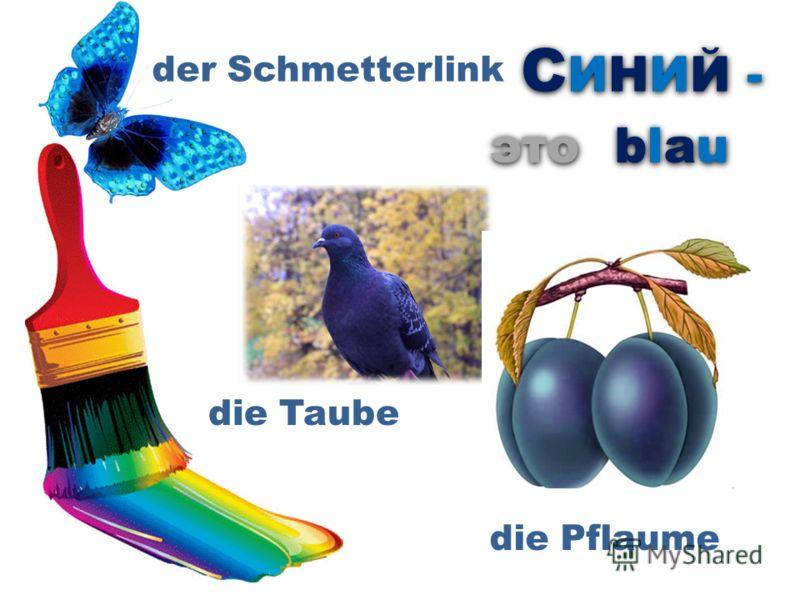 СИНИЙ -СИНИЙ - СИНИЙ -СИНИЙ - это der Schmetterlink die Pflaume die Taube blaublau blaublau