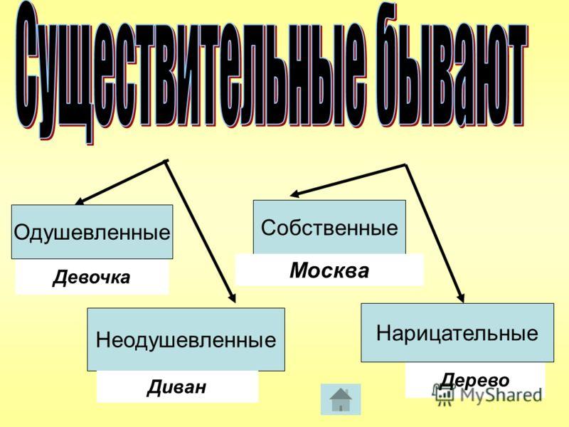 Неодушевленные Девочка Диван Собственные Дерево Нарицательные Москва Одушевленные