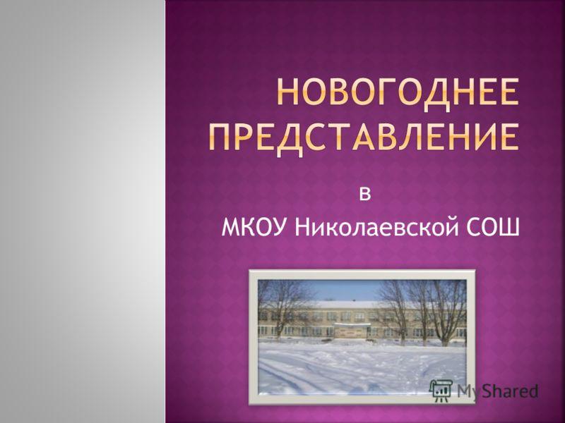 в МКОУ Николаевской СОШ