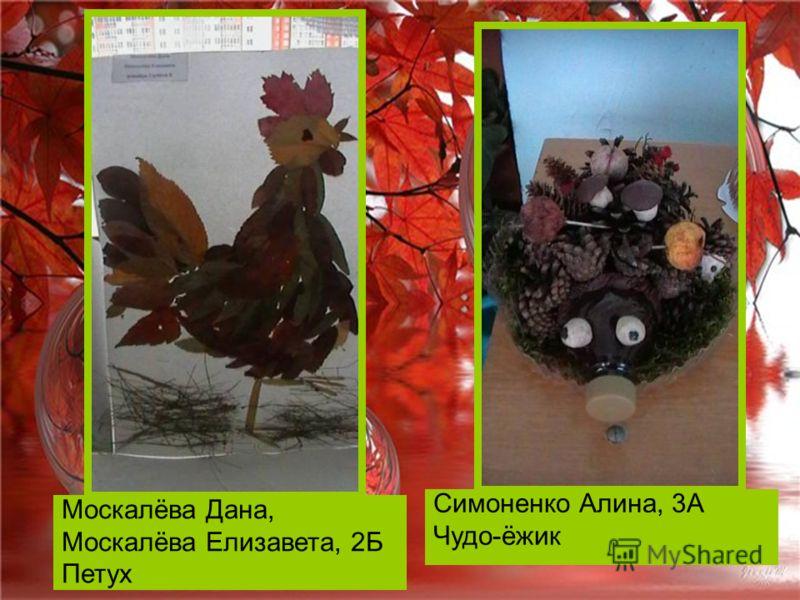 Москалёва Дана, Москалёва Елизавета, 2Б Петух Симоненко Алина, 3А Чудо-ёжик
