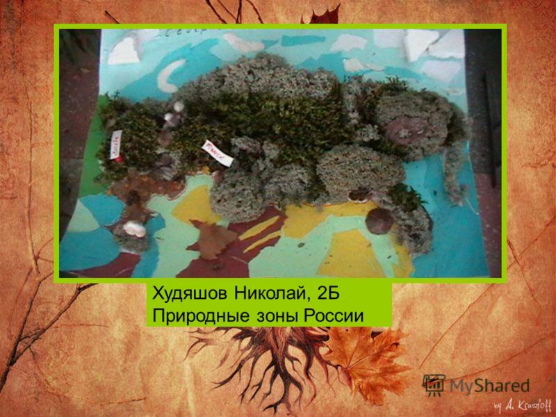 Худяшов Николай, 2Б Природные зоны России