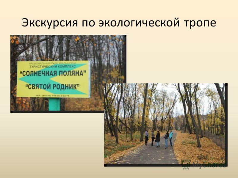 Экскурсия по экологической тропе