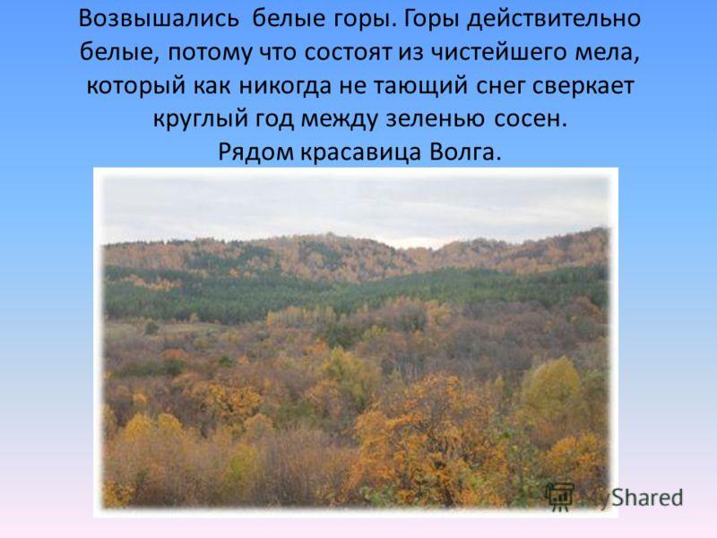 Возвышались белые горы. Горы действительно белые, потому что состоят из чистейшего мела, который как никогда не тающий снег сверкает круглый год между зеленью сосен. Рядом красавица Волга.