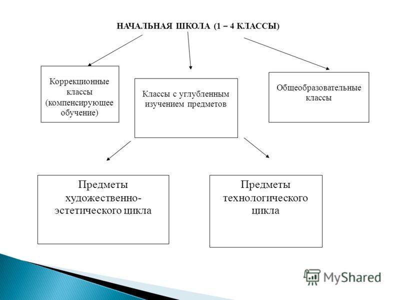 Классы с углубленным изучением предметов Коррекционные классы (компенсирующее обучение) Общеобразовательные классы Предметы художественно- эстетического цикла Предметы технологического цикла НАЧАЛЬНАЯ ШКОЛА (1 – 4 КЛАССЫ)