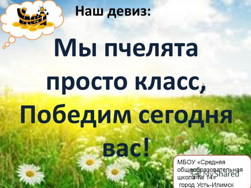 Наш девиз: Мы пчелята просто класс, Победим сегодня вас! МБОУ «Средняя общеобразовательная школа 14» город Усть-Илимск