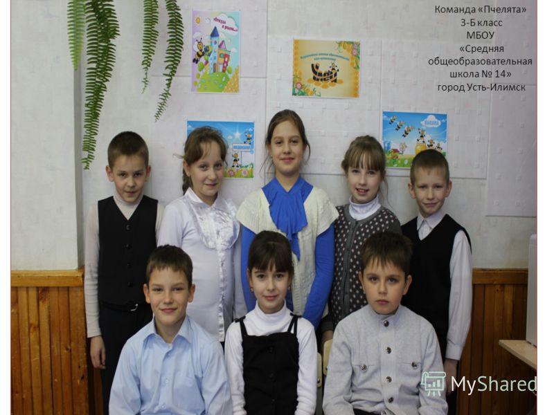 Команда «Пчелята» 3-Б класс МБОУ «Средняя общеобразовательная школа 14» город Усть-Илимск