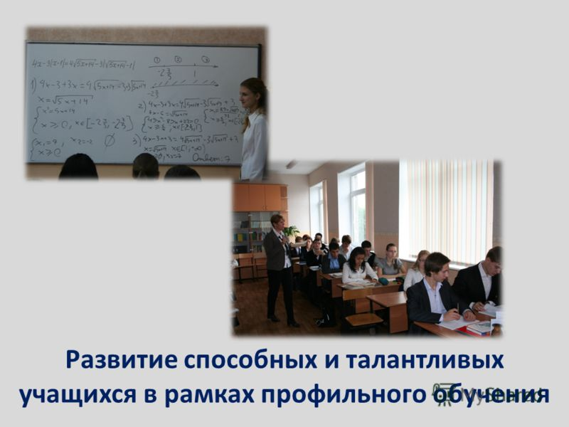 Развитие способных и талантливых учащихся в рамках профильного обучения