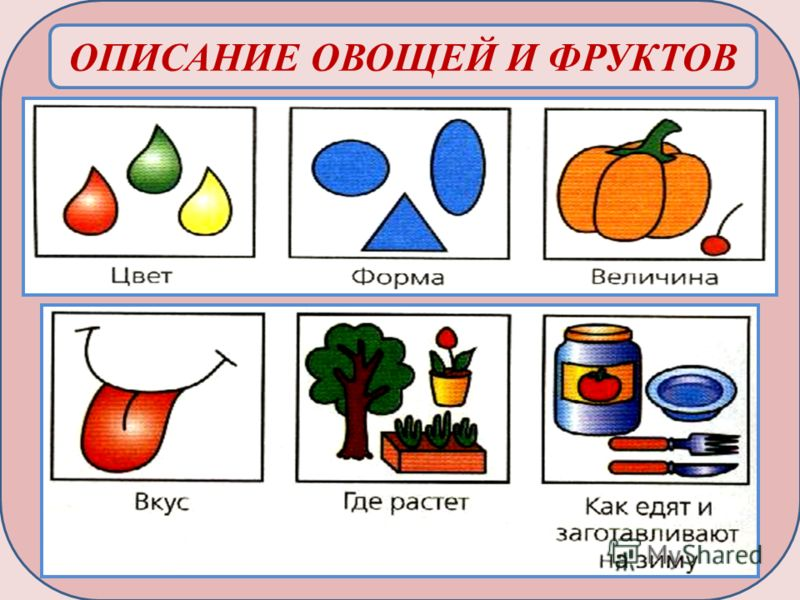 Картинки по запросу картинки схема описание овоща