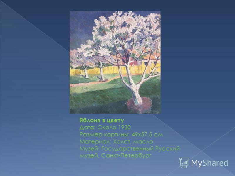 Яблоня в цвету Дата: Около 1930 Размер картины: 49x57.5 см Материал: Холст, масло Музей: Государственный Русский музей, Санкт-Петербург