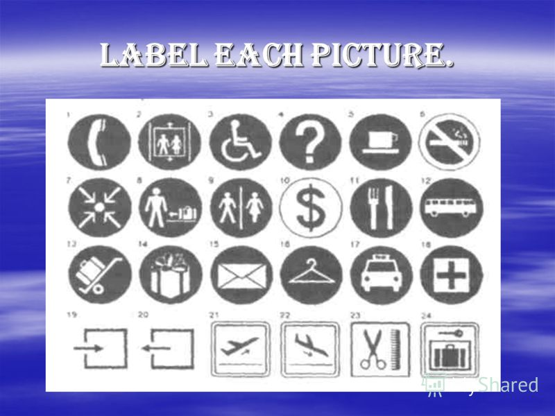 Label each picture.
