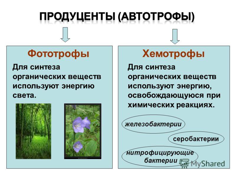 Биогенные элементы C H N O P S