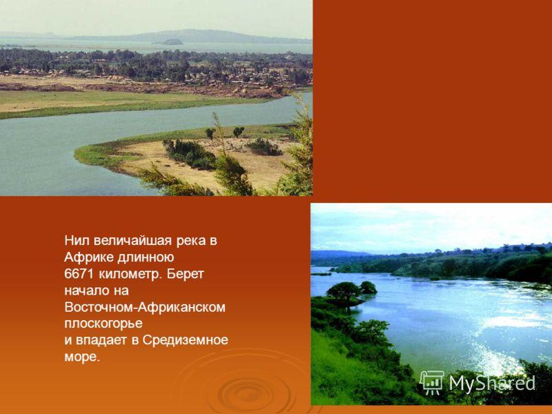 Нил величайшая река в Африке длинною 6671 километр. Берет начало на Восточном-Африканском плоскогорье и впадает в Средиземное море.