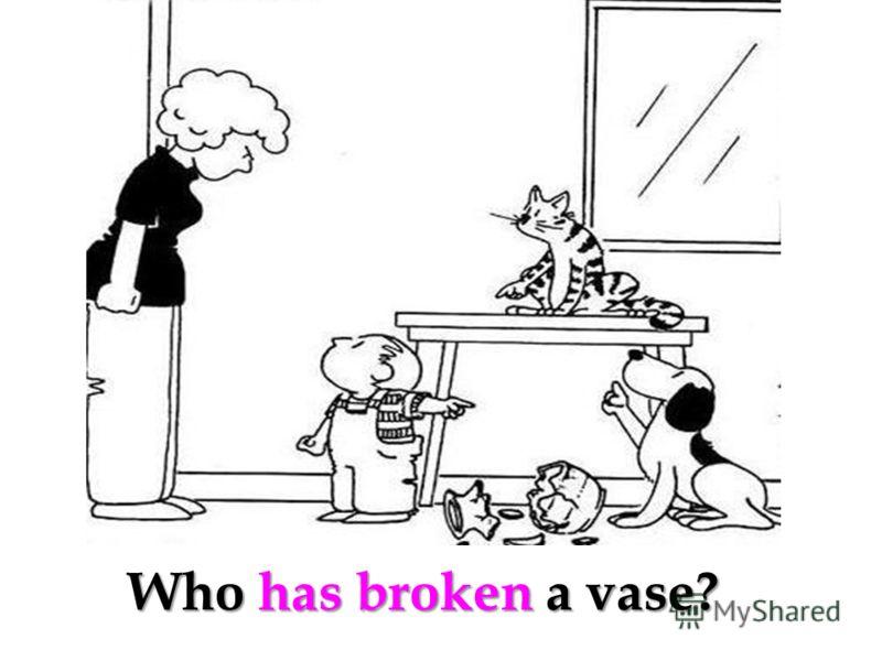 Who has broken a vase?