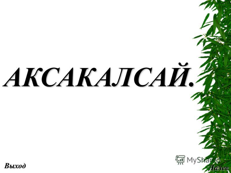 Выход Далее АКСАКАЛСАЙ.