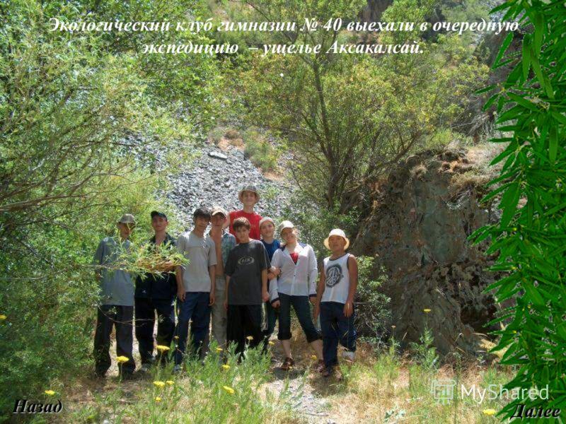 Экологический клуб гимназии 40 выехали в очередную экспедицию – ущелье Аксакалсай.. Назад Далее