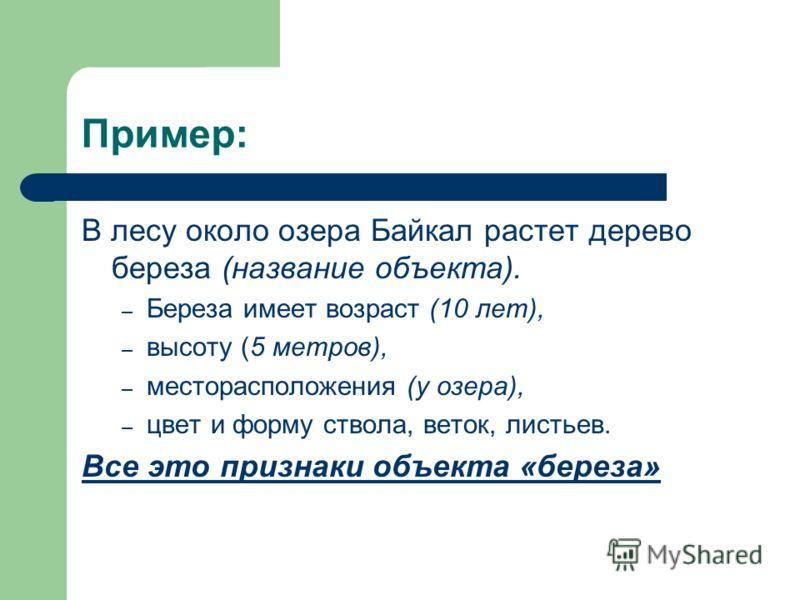 Пример: В лесу около озера Байкал растет дерево береза (название объекта). – Береза имеет возраст (10 лет), – высоту (5 метров), – месторасположения (у озера), – цвет и форму ствола, веток, листьев. Все это признаки объекта «береза»