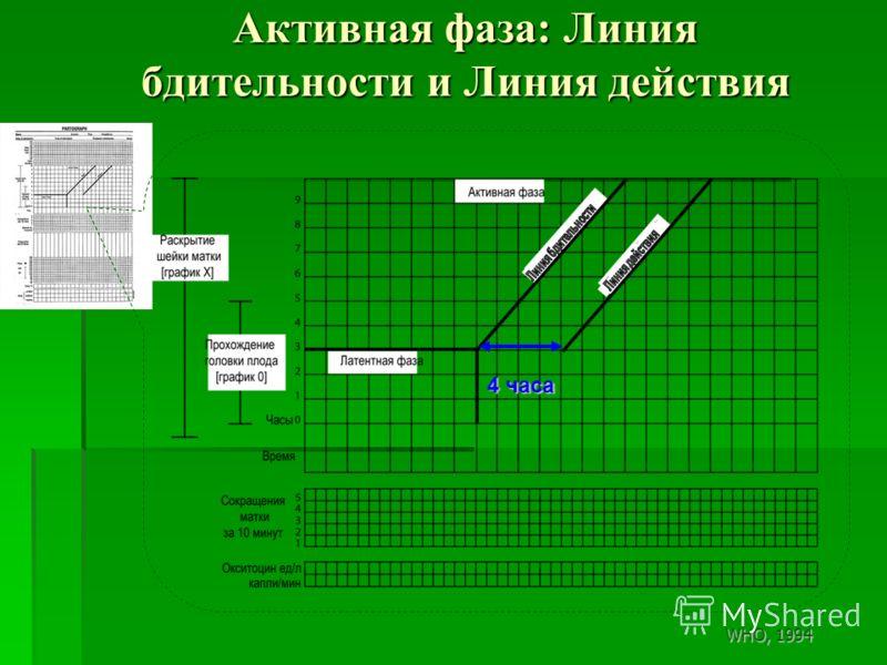 Активная фаза: Линия бдительности и Линия действия 4 часа WHO, 1994