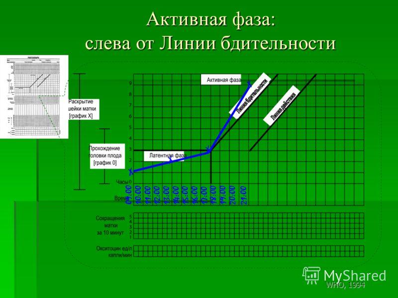 Активная фаза: слева от Линии бдительности 09:0010:0011:0012:0013:0014:0015:0016:0017:00 18:00 19:0020:00 X X 21:00 X WHO, 1994 X