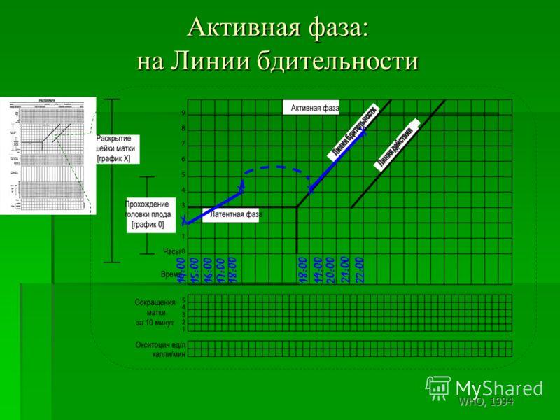 Активная фаза: на Линии бдительности 14:0015:0016:0017:0018:00 X X X 21:00 20:00 18:00 19:00 22:00 X WHO, 1994