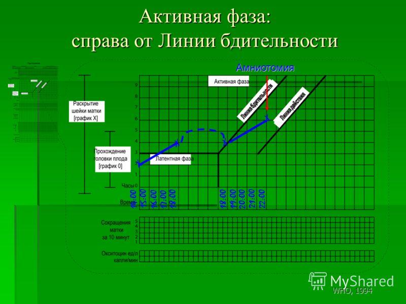 Активная фаза: справа от Линии бдительности X 14:00 X X X 15:00 16:00 17:00 18:00 21:00 20:00 18:00 19:00 22:00 Амниотомия WHO, 1994