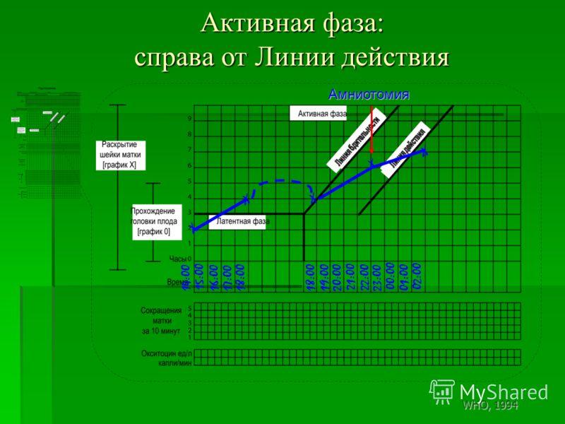Активная фаза: справа от Линии действия X 14:00 X X X 15:00 16:00 17:00 18:00 21:00 20:00 18:00 19:00 22:00 Амниотомия X 23:00 00:00 01:00 02:00 WHO, 1994