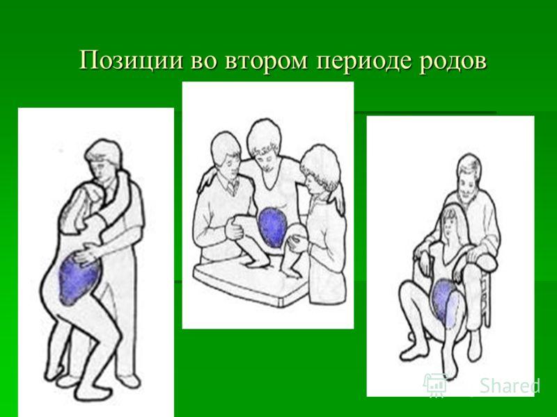 Позиции во втором периоде родов