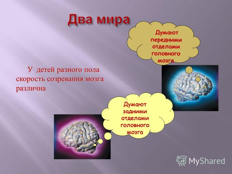 Думают передними отделами головного мозга Думают задними отделами головного мозга У детей разного пола скорость созревания мозга различна