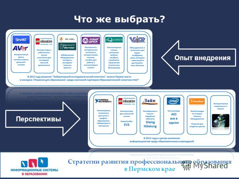 Что же выбрать? Стратегии развития профессионального образования в Пермском крае Опыт внедрения Перспективы