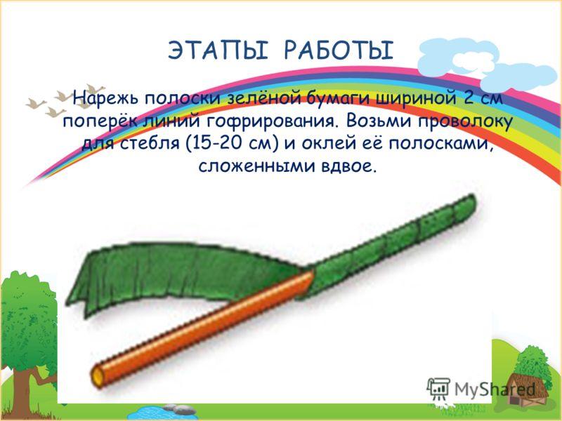 ЭТАПЫ РАБОТЫ Нарежь полоски зелёной бумаги шириной 2 см поперёк линий гофрирования. Возьми проволоку для стебля (15-20 см) и оклей её полосками, сложенными вдвое. 27 февраля 2013 г.Signature of Teacher