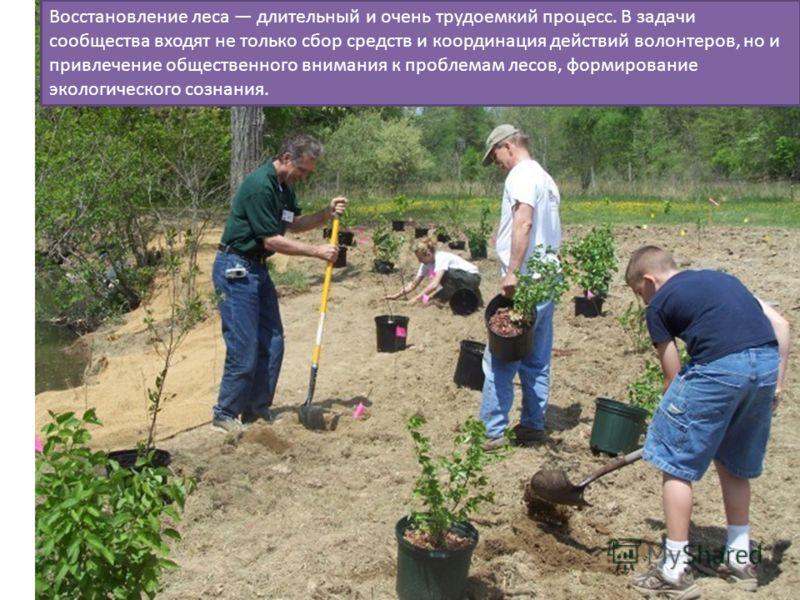 Восстановление леса длительный и очень трудоемкий процесс. В задачи сообщества входят не только сбор средств и координация действий волонтеров, но и привлечение общественного внимания к проблемам лесов, формирование экологического сознания.