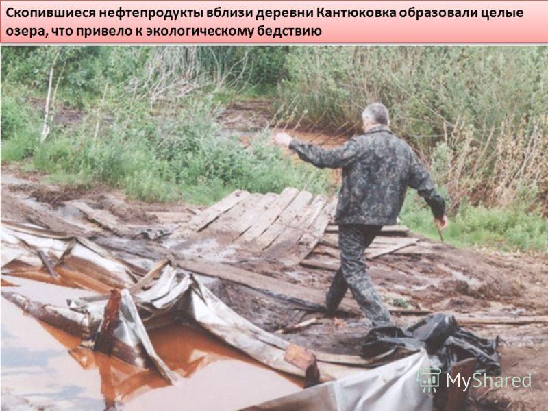 Скопившиеся нефтепродукты вблизи деревни Кантюковка образовали целые озера, что привело к экологическому бедствию