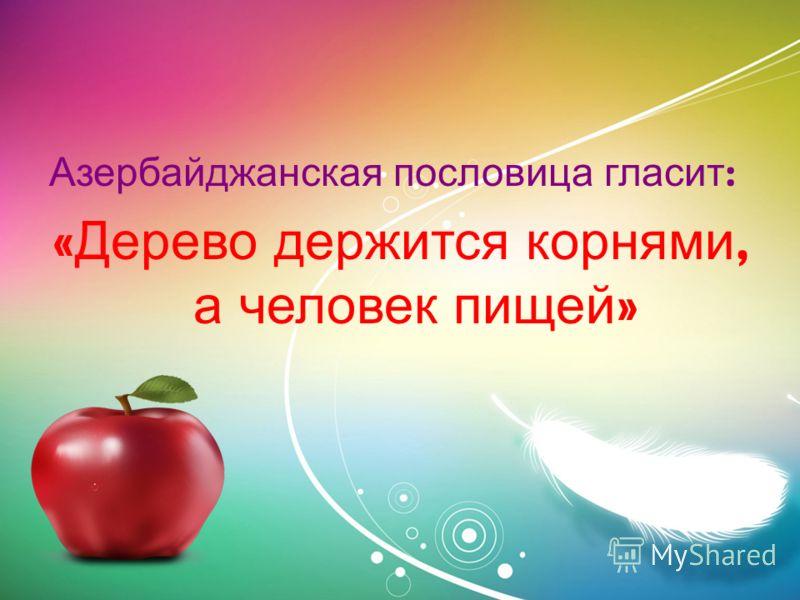 Азербайджанская пословица гласит : « Дерево держится корнями, а человек пищей »
