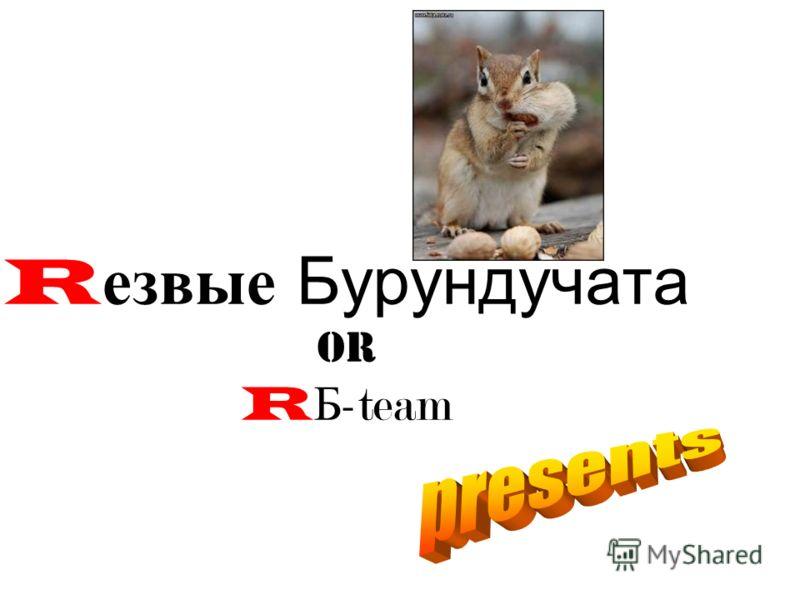 R езвые Бурундучата or R Б -team