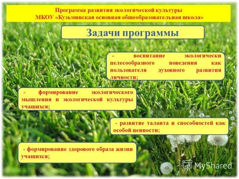 Программа развития экологической культуры МКОУ «Кузьминская основная общеобразовательная школа» -- воспитание экологически целесообразного поведения как пользователя духовного развития личности; -- формирование экологического мышления и экологической
