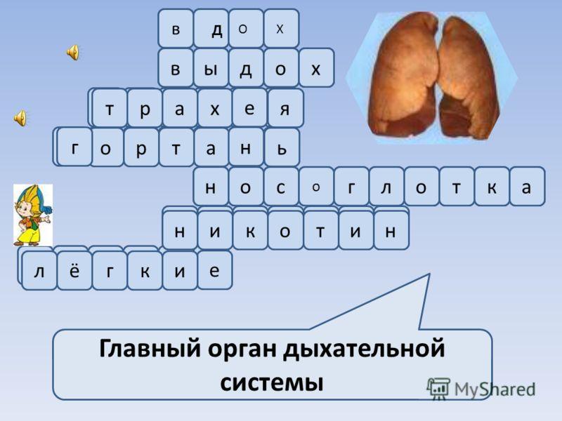 Главный орган дыхательной системы Д ОХ в выдох х е яартьа н тор гнос о глоткантиоикне икгёл