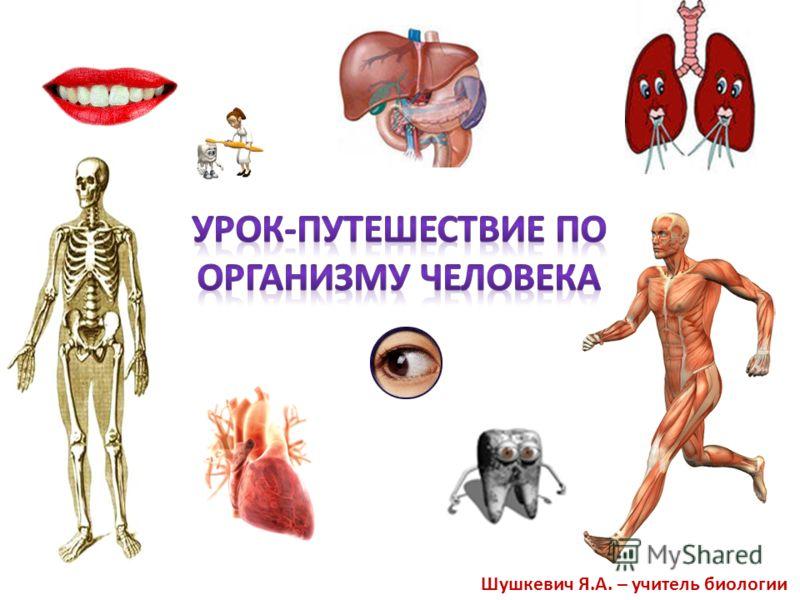 Шушкевич Я.А. – учитель биологии