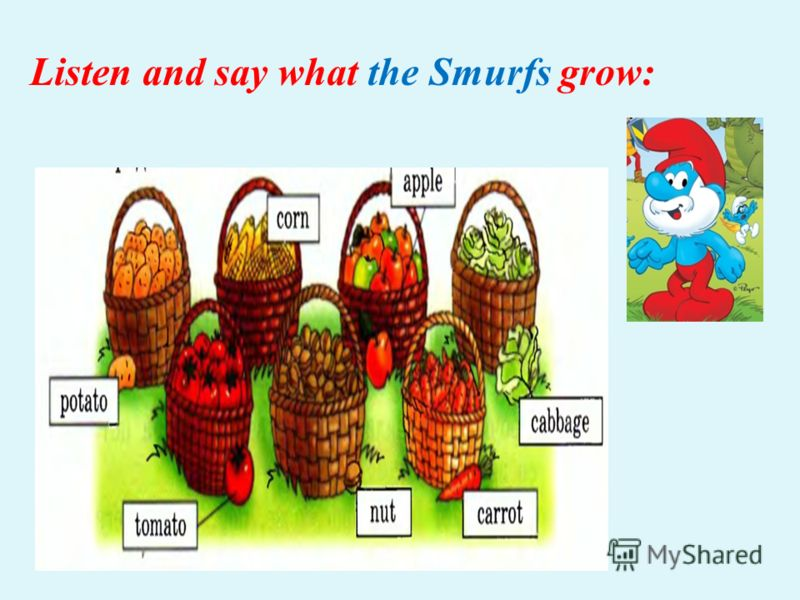Listen and say what the Smurfs grow: