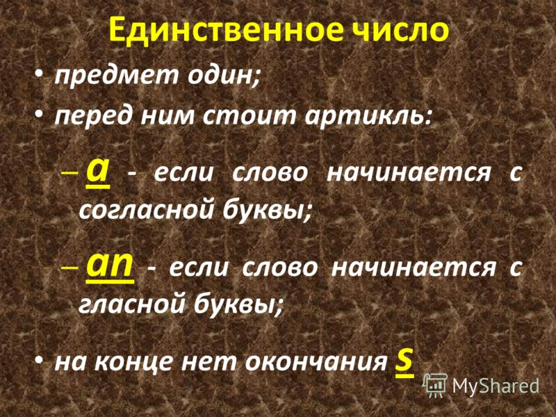 Единственное число предмет один; перед ним стоит артикль: – a - если слово начинается с согласной буквы; – an - если слово начинается с гласной буквы; на конце нет окончания s