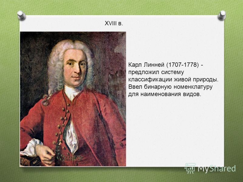 Х VIII в. Карл Линней (1707-1778) - предложил систему классификации живой природы. Ввел бинарную номенклатуру для наименования видов.
