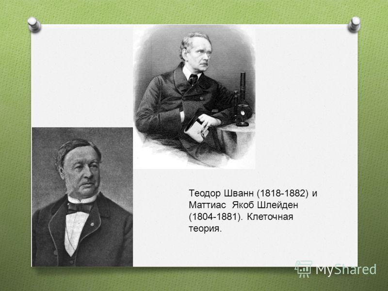 Теодор Шванн (1818-1882) и Маттиас Якоб Шлейден (1804-1881). Клеточная теория.