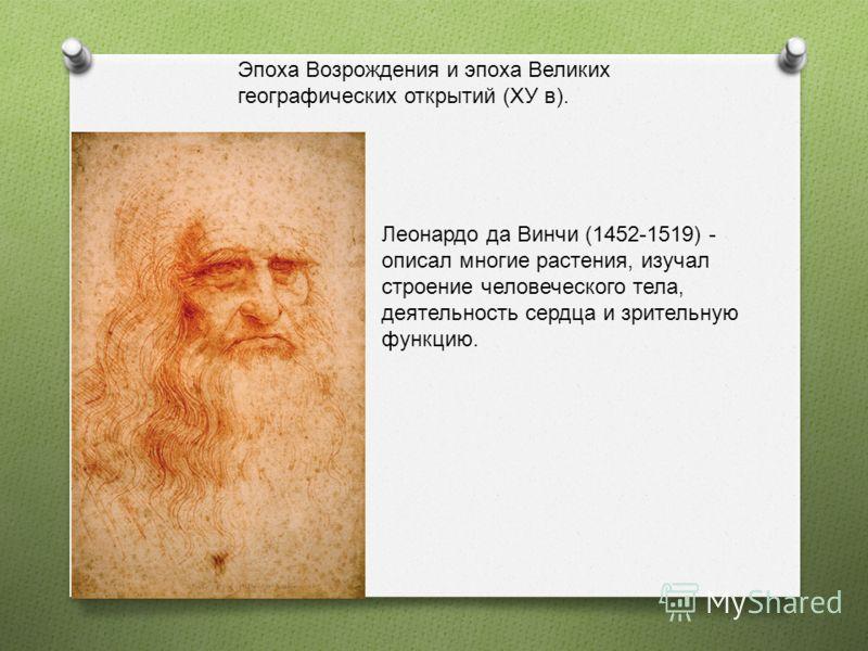 Эпоха Возрождения и эпоха Великих географических открытий (ХУ в). Леонардо да Винчи (1452-1519) - описал многие растения, изучал строение человеческого тела, деятельность сердца и зрительную функцию.