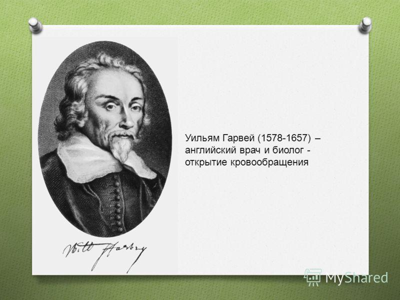 Уильям Гарвей (1578-1657) – английский врач и биолог - открытие кровообращения