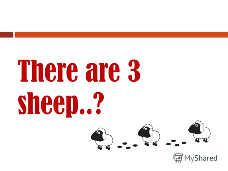 Correct! Its a sheep!