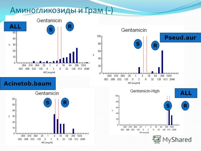 Аминогликозиды и Грам (-) ALL Pseud.aur Acinetob.baum R S R R R S S S